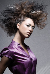 Finalists in 2008 NAHA Announced