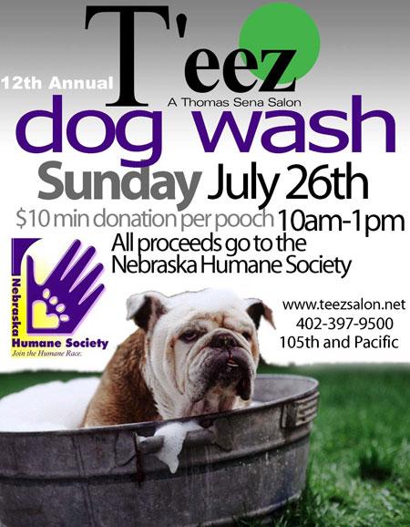 Down at the Dog Wash