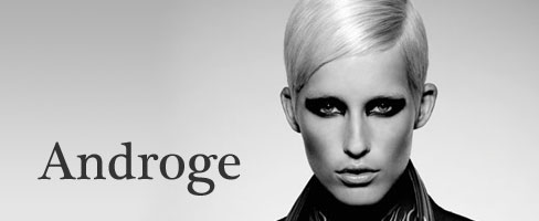 Androge: Cosmetologists Chicago