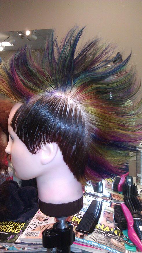 Rainbow Hawk by Delicia Destine