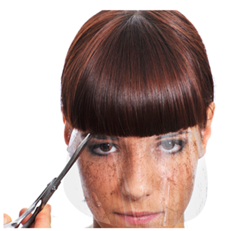FacePro Face Shield