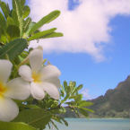 Hawaii's Spa Marketplace Conference and Expo