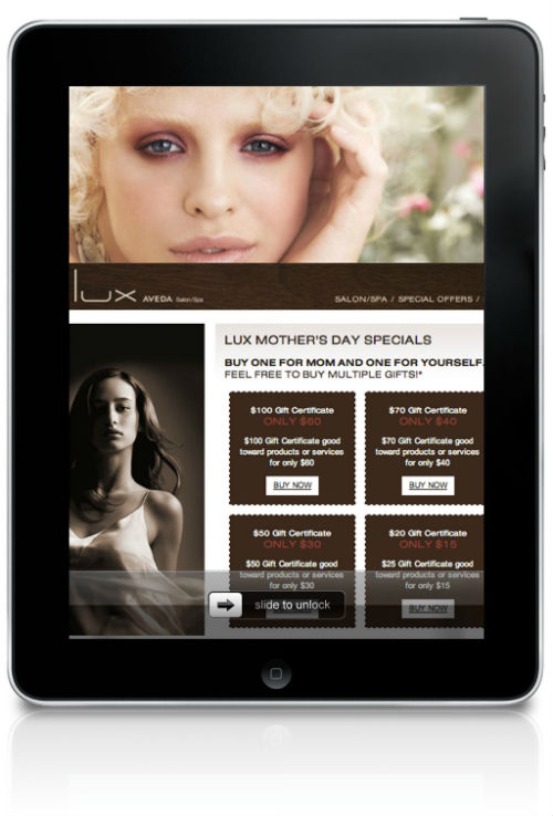 2013 STAMP Digital Promotional Eblast Winner: Lux Aveda Salon Spa