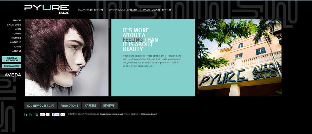 2013 STAMP Website Winner: Pyure