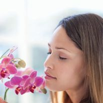 The Science of Scent: Why Product Fragrance Matters