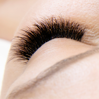 Take Lashes to the Next Level With NovaLash London Volume autoFAN mix camellia