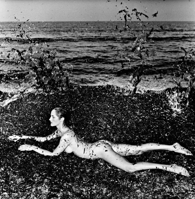 "<p class=""textbox"" dir=""ltr"">Helmut Newton 'Nude In Seaweed"" Saint Tropez large-format, signed, titled, and dated in pencil on the reverse, framed, 1981, no. one in an edition of 10 19 1/4 by 18 7/8 in. (48.9 by 47.9 cm.) <br />Estimate $20/30,000</p>"