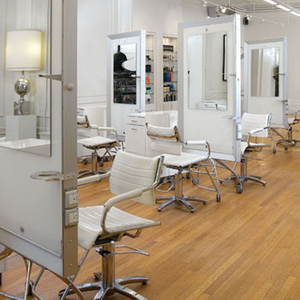 Salons of the Year 2010: Judges & Process