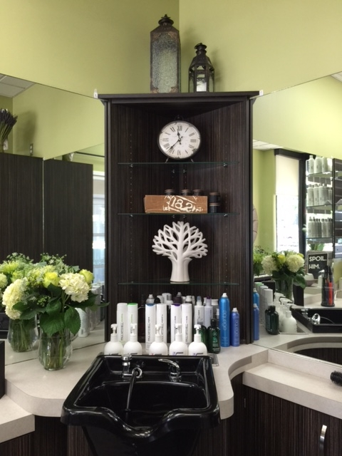 Serendipity Beauty Parlor at Sola Suites in Park Ridge, Illinois