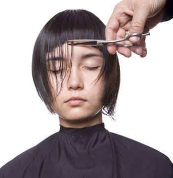 3. Continue to direct the hair forward, working back to the crown, cutting to the guide.