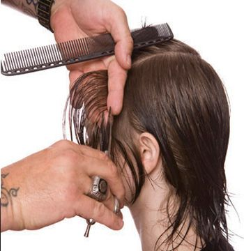 Begin the cut in front of the temple area. Take a vertical section and pull straight out. Cut to finger length.