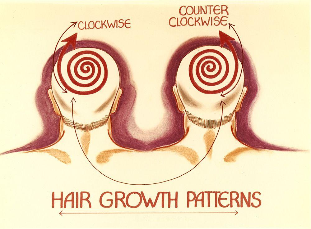 Hair Growth Patterns