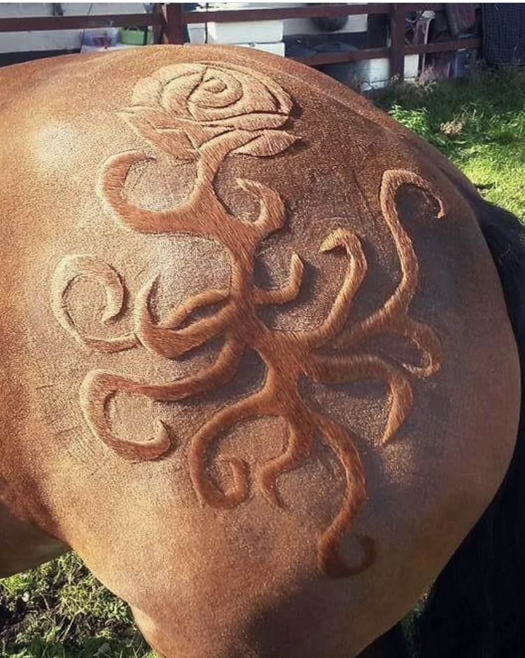 Spotted on @thehorsebarber_melody, she writes that this rose design was freehanded.