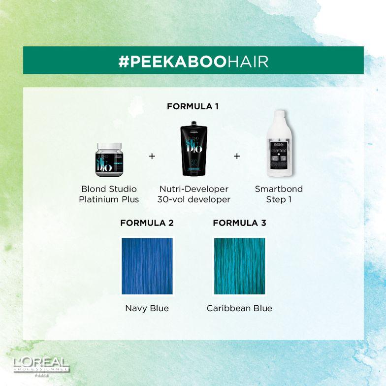 <p>#PEEKABOOHAIR color formula</p>