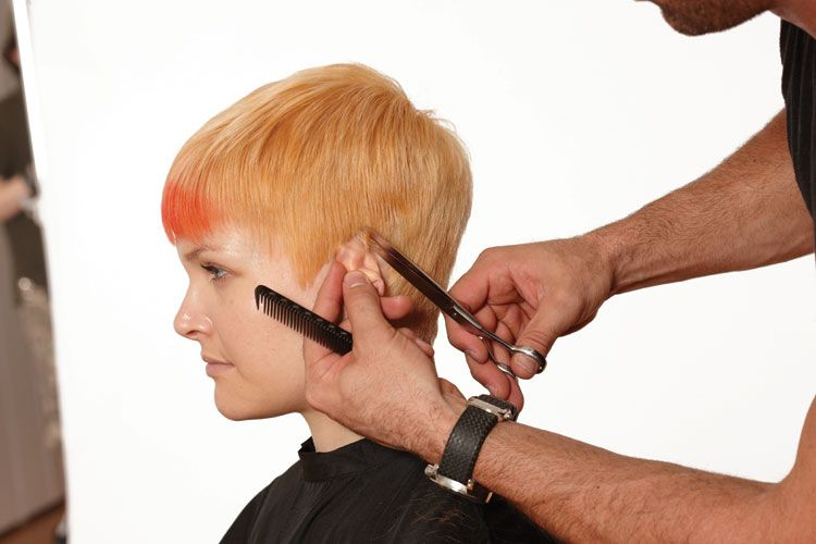 7. Then pull the ear forward and cut behind the ear, defi ning the line, blending forward.