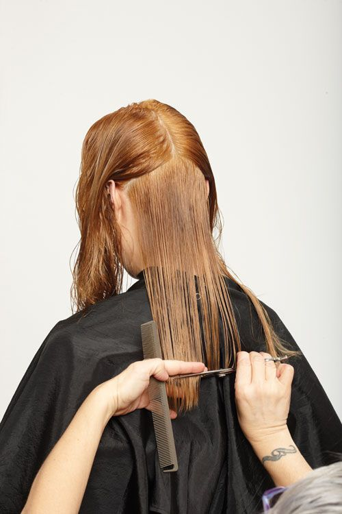 7. Begin the cut in the back. Bring down all the hair from below the occipital. Cut straight across to the desired length.