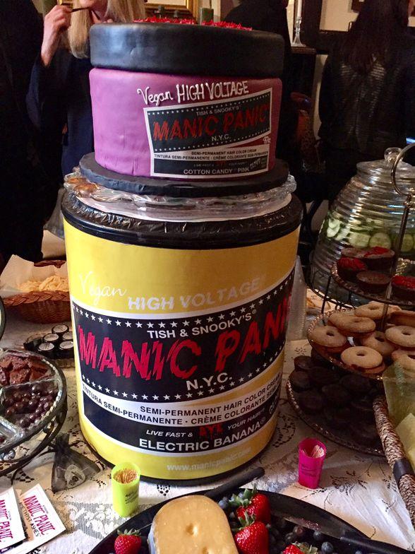 The MANIC PANIC cake