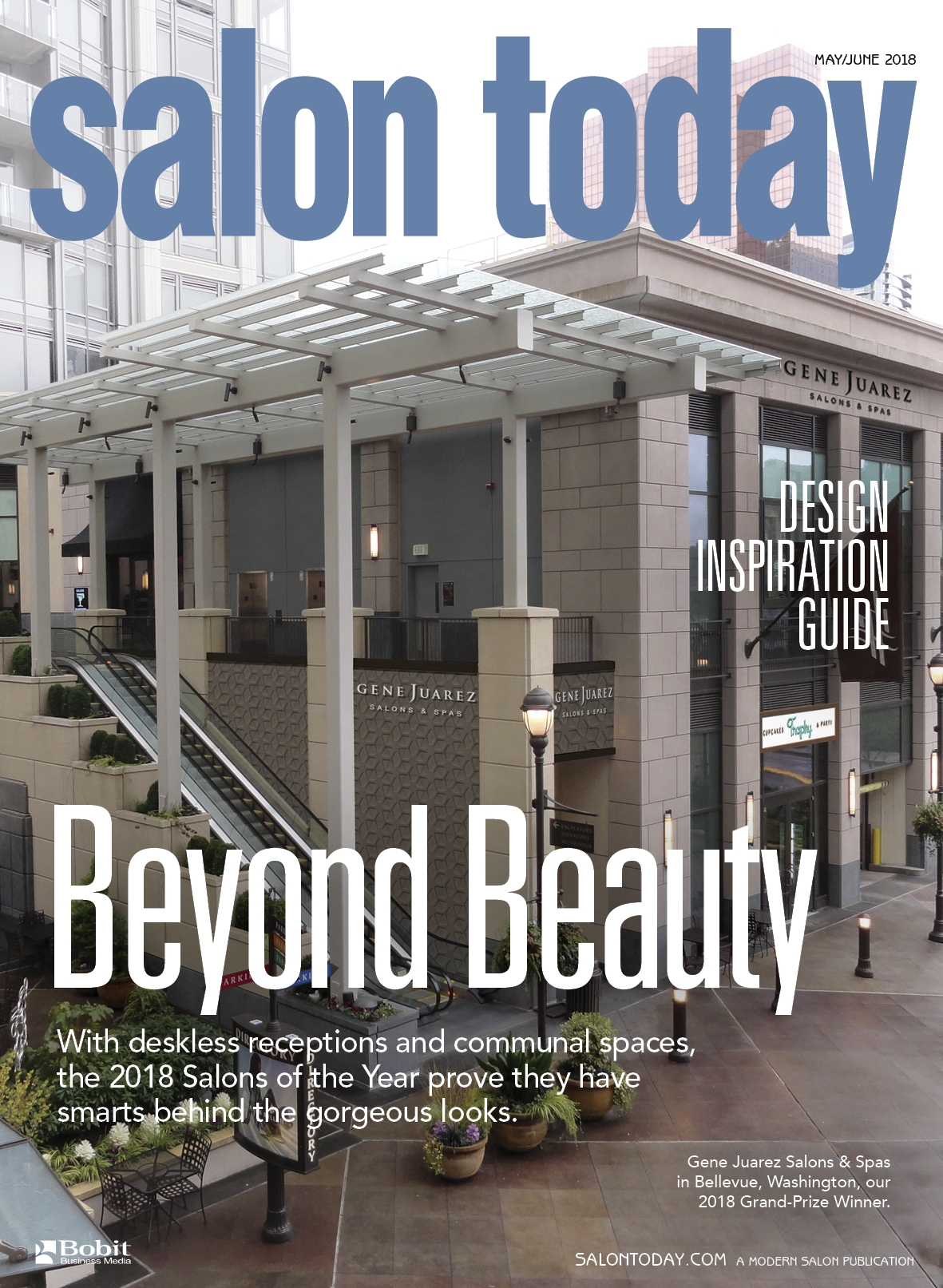 Announcing the 2018 Salons of the Year