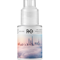 R+Co Adds Freeway Defining Spray Gel and Skyline Shampoo Powder