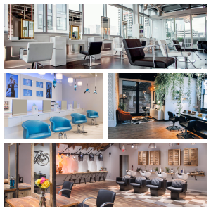 The 2017 Salons of Distinction