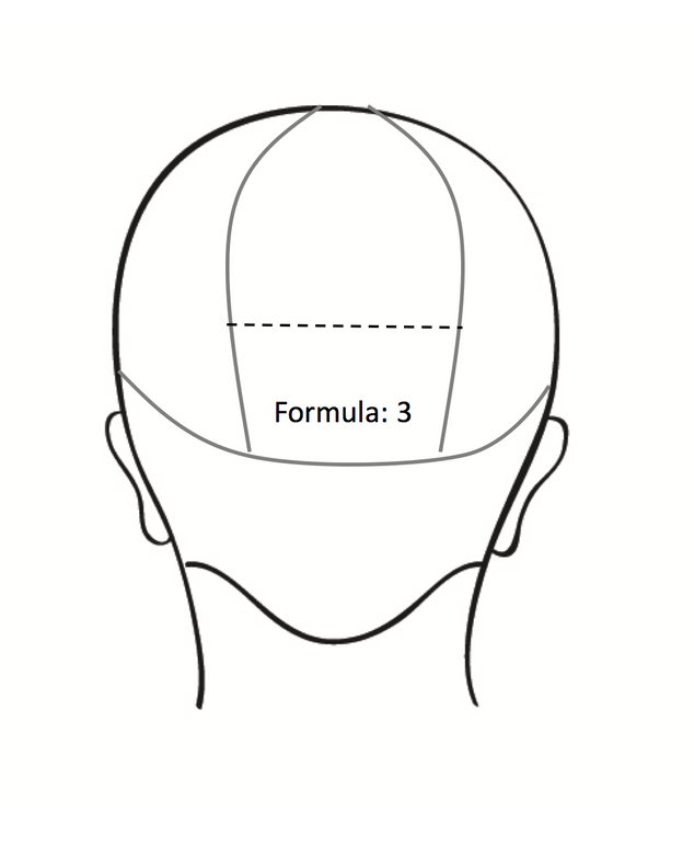 <strong>Step 3A:</strong> Part the hair into a triangular section, starting at the apex and ending at the bottom section. Sub-section the bottom half of your triangle and apply ColorLush Lavender Formula. Clip the top portion away.