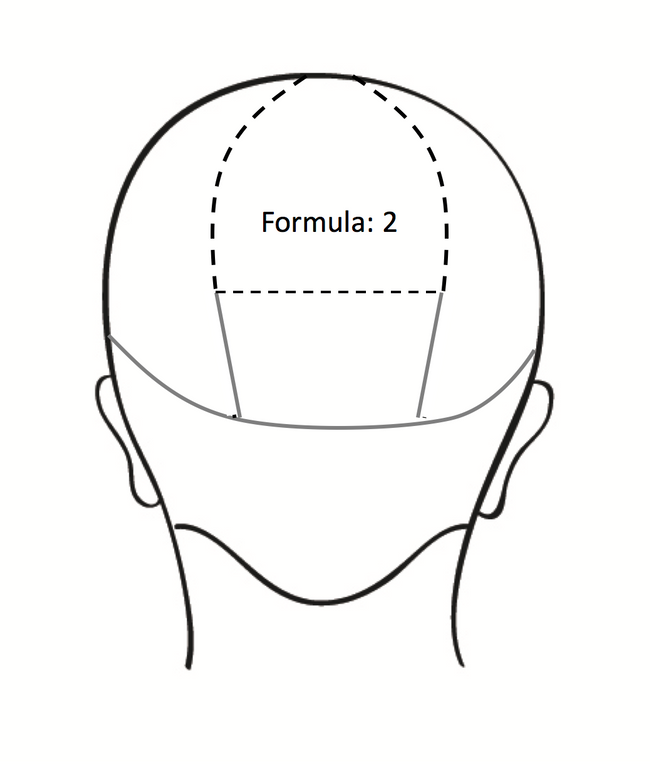 <strong>Step 5B:</strong> Moving to the back, apply ColorLush Silver Formula to the top section of your triangle.