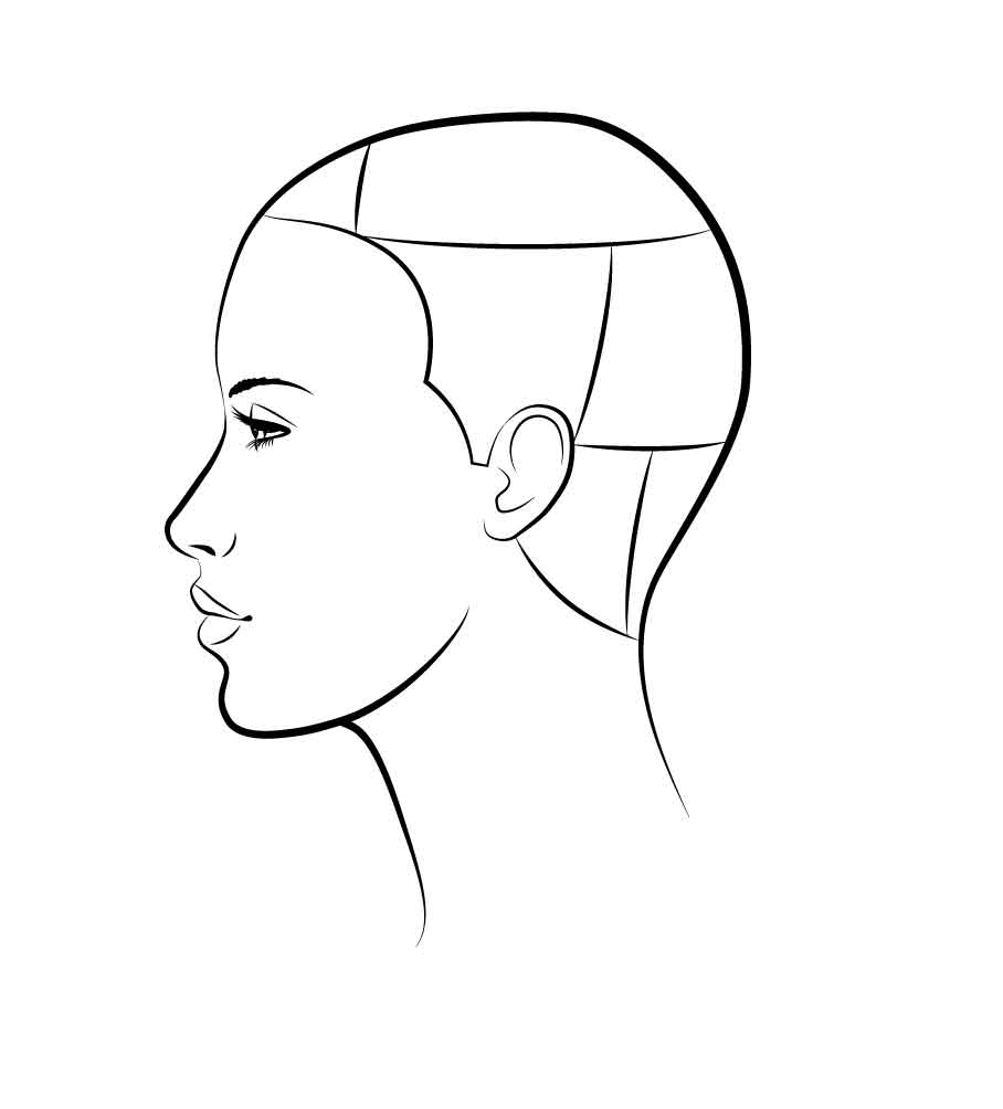 STEP 1 - Cut: Start at the nape to create your base line length. Move to the center nape, elevate and cut soft layers. Continue through to the top back section using the same angles.