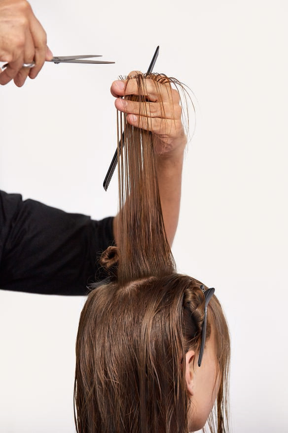 STEP 2 - Cut: Move to the top of the head, elevate straight up, cut at a horizontal finger angle.