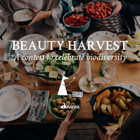 Davines Announces Beauty Harvest Contest