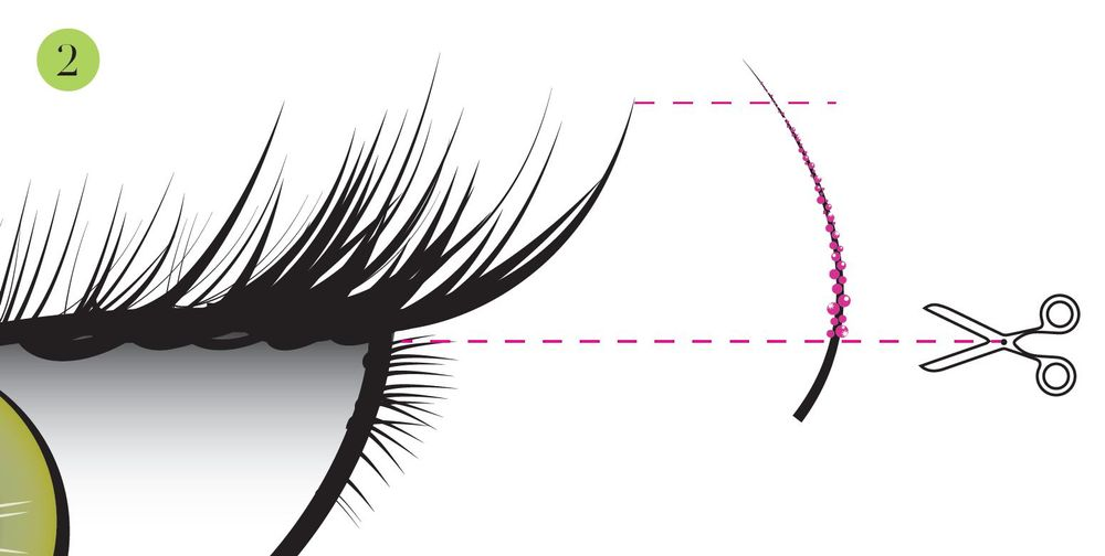 Measure the candied lash to the natural lash. (All candied lashes come in 14 mm so have scissors on hand.)