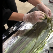 Rachel Cordasco demos how-to color wefts effeciently.