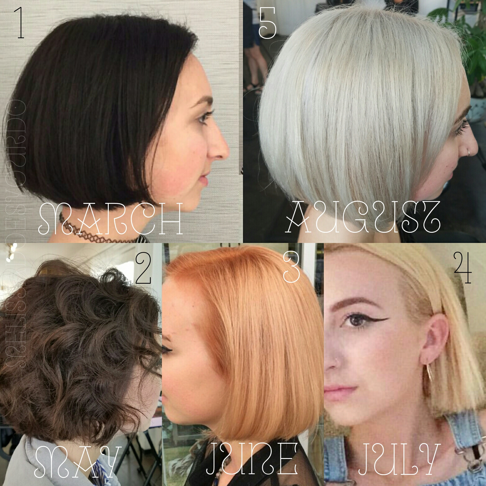 The Journey: From Black to Blonde - And Everything In-Between