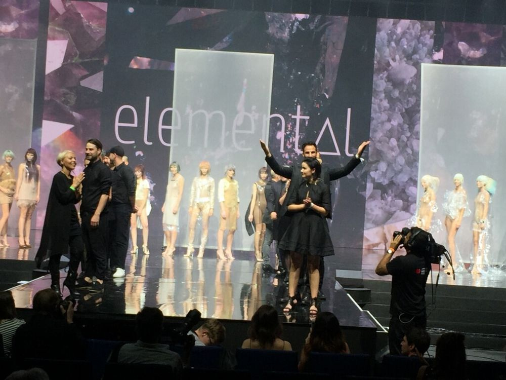 <strong>International Artistic Team</strong> and creators of the Color Zoom 2018 trend,<strong> Elemental</strong>
