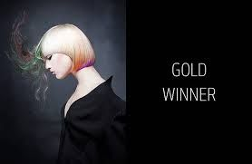 Daniel Rubin's winning image that got him to the finals of the 2016 Goldwell Color Zoom.
