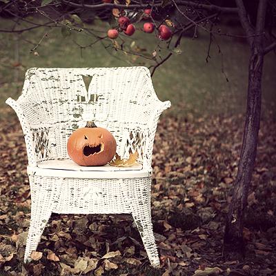 Pumpkin Fall Services!