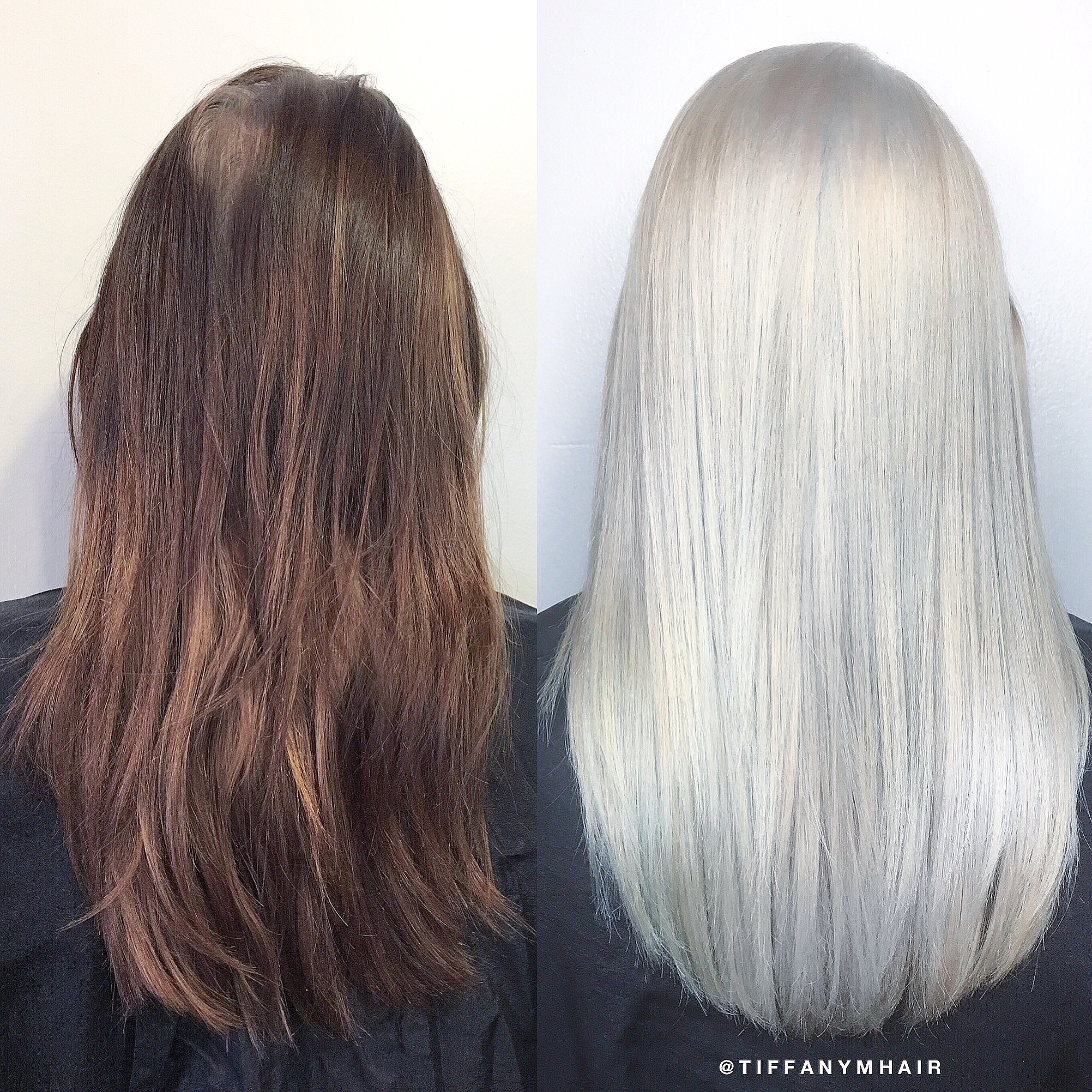 Box Brunette to Solid Platinum in 6 Hours
