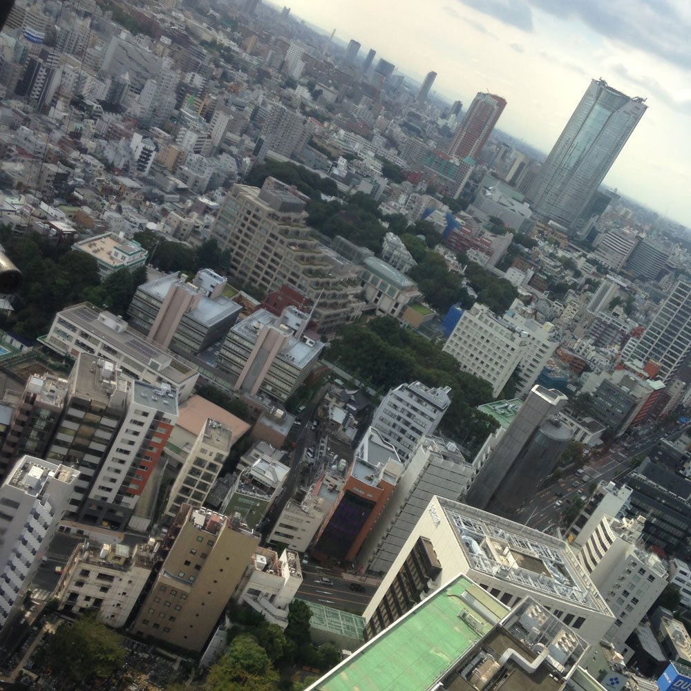A view from Tokyo Tower.