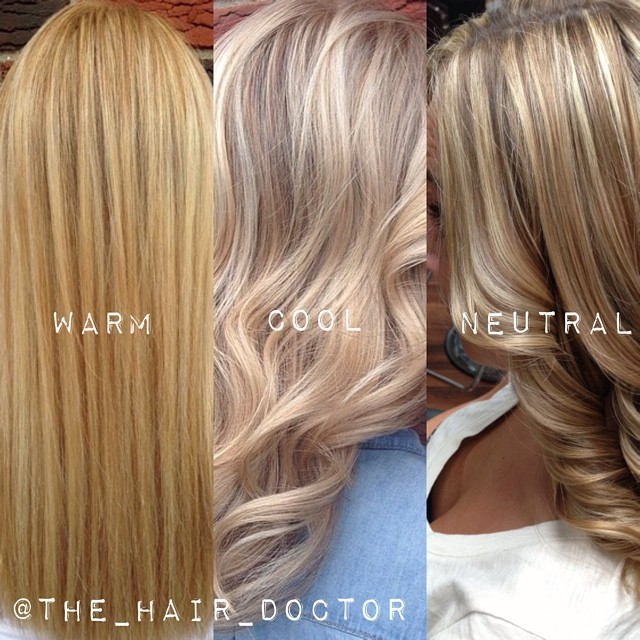 The Difference Between Warm Cool And Neutral Blondes Career