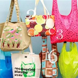 Retail Boutique: Reusable Shopping Bags