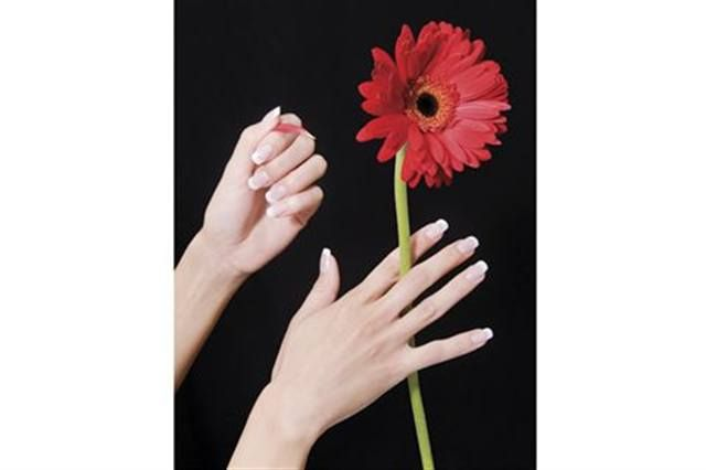 <p>2008: Kali Howden (Nail Enhancement Technician of the Year) featured a flower theme in her photos.</p>