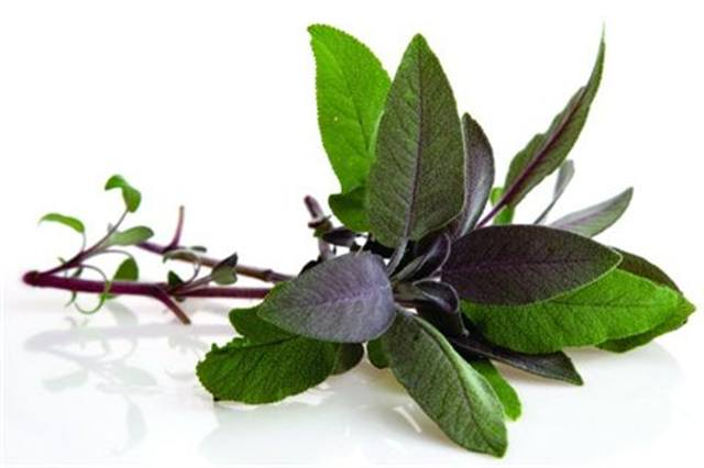 <p>Clary Sage - relaxing</p>
