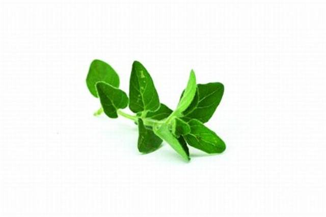 <p>Marjoram - relaxing</p>