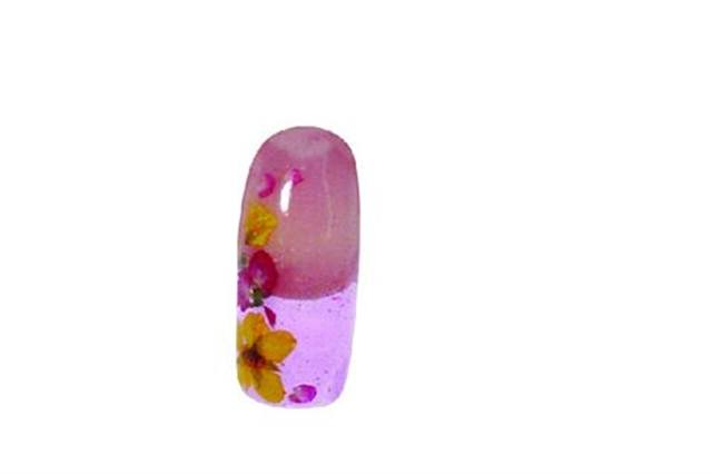 <p>You are surrounded. Here Le Chat colored gel and dried flowers are used together to create a pretty and subtle design.</p>