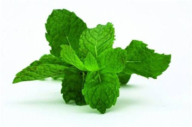 <p>Peppermint - rejuvenating and aphrodisiac</p> <p>Stimulates the mind; acts as an antiseptic and deodorizer</p>