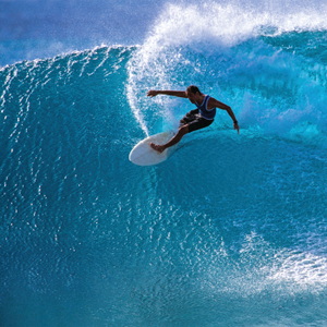 Trend Watch: Surf