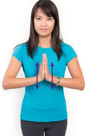 Place the palms together in prayer position. Keeping the heels of the hands together, slowly lower the hands and raise the elbows so the angle at the wrist decreases.