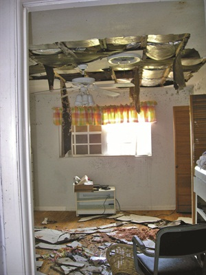 <p>After Frances, the ceilings of my home begain falling in and mold started to grow on all the walls.</p>