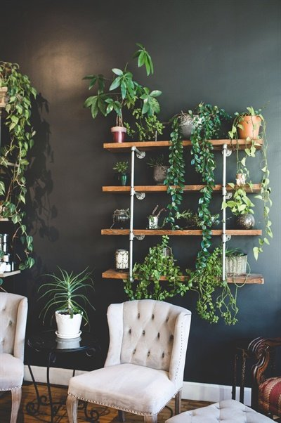 In line with their all-natural tendencies, plants add an extra bit of life and freshness to the salon decor.