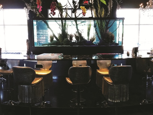 This 450-gallon fresh water tank is the centerpiece of the salon.
