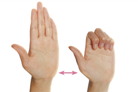 <p>Hold the right hand straight, with fingers and thumb pointing upward. Bend fingers and thumb at the knuckle so fingertips are touching the pads at the bottom of the fingers. Open and bend digits several times, then repeat with the left hand.</p>